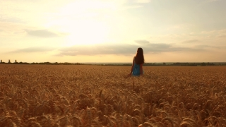 Aerial Close Up Beautiful Young Hippy Woman Walking Through Wheat Field Freedom Beauty Fashion Dress Love Romance Concept