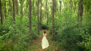 Beautiful Princess Bride Walking Through Forest Path Aerial Fly Through Trees Drone Shot Sunset Rays Through Woods Beauty Paradise Religion Spirituality Concept