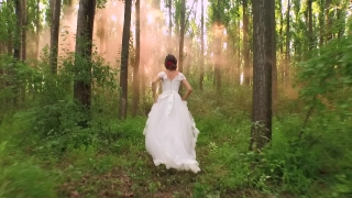 Beautiful Bride White Princess Woman Dress Vintage Running Through Forest Slow Motion Mist Sun Shining Through Trees Sunset Nature Beauty Dream Fairy Tale
