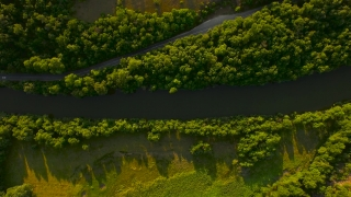 Aerial View Over River Valley Forrest Road Beautiful Landscape Fertile Land Green Summer Nature Amazon