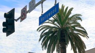 People Walking City Blurred Motion Los Angeles Crowd USA Tourism Pedestrians Footage Famous Tourists Hollywood Boulevard Sidewalk California Landmark Travel