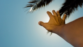 Hand In The Sun Flare Vacation Travel Hope Summer Freedom Sun Clean Energy Spirituality Environmental Concept HD